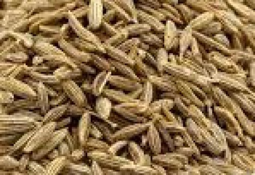 Kalonji (Nigella Seeds) - 100 gm