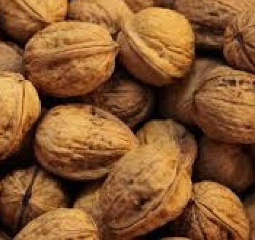 Walnuts - 400 gm (With Shell)
